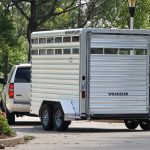 2 Horse Wrangler Stock Combo - Standard Full Width Rear Gate