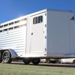3 Horse Wrangler Stock Combo - Standard Dress Door with Window